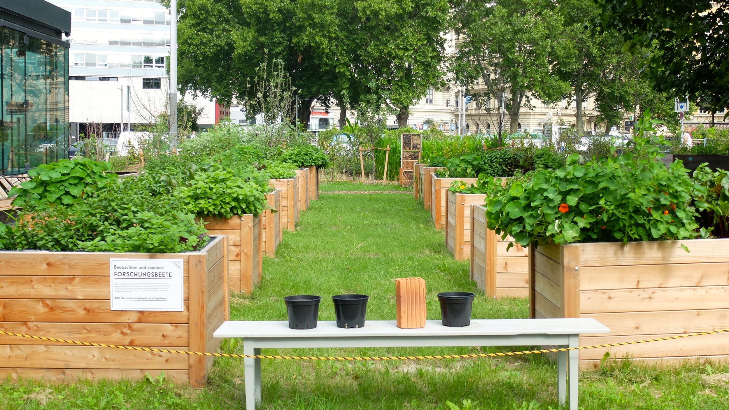 7_KG_research_garden